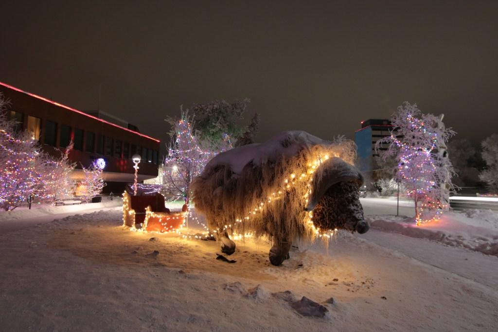Winter Lights at Somba K'e Park Scenic Locations