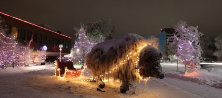 Image from Winter Lights Virtual Tour